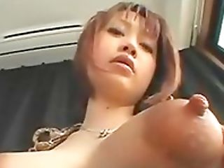 Big Nipples, Big Tits, Ethnic, Natural Tits,
