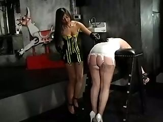 Black, Bold, Brunette, Caning, Crissy Taylor, Fingering, First Timer, Mistress, Panties, Pawg,