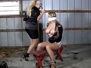 BDSM: 172 Videos