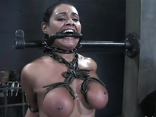BDSM, Charlee Chase, Charley Chase, Lexi Belle,